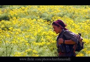 4248041393_54bd138e58_z  Kurdish Women Freedom Fighters