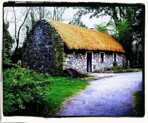 846247142_572e10af3d_z   Cottage in Ireland