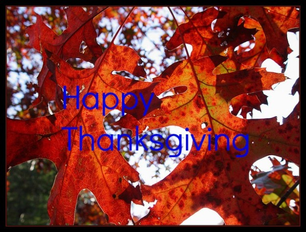 66466082_85943b551c_z  Happy Thanksgiving via Scott Robinson Flickr  text added