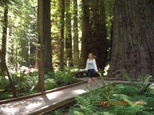 Kate near the trees