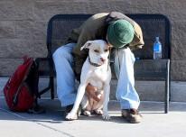 3093763311_2a83db98ba_z Homeless Boy and his dog