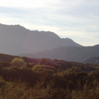 Topanga Canyon Trail