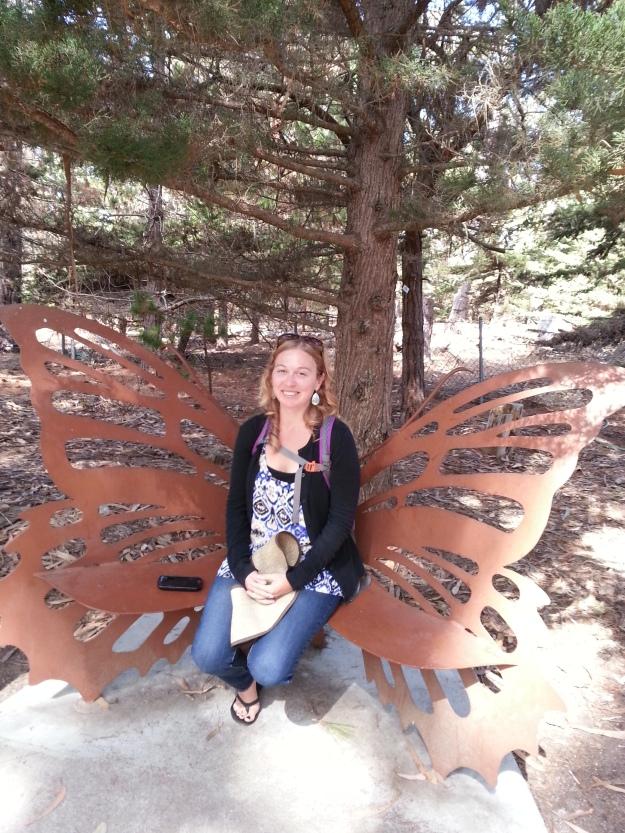20151010_131409  A Beautiful Butterfly