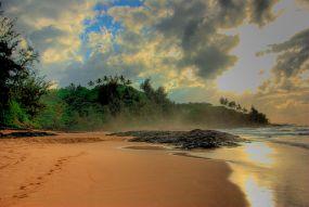 'Secret Beach' by Bryce Edwards