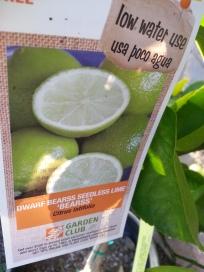 Label on tree