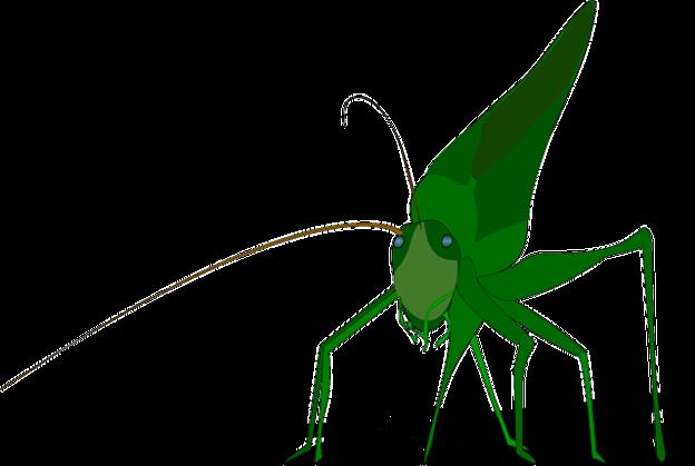 Bug image via Pixabay.com