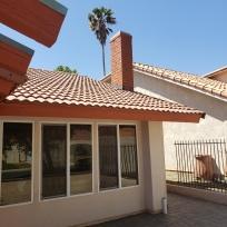 Sunshine, tile roofs, blue sky, and Palm tree